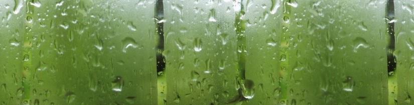 Het beslagen raam