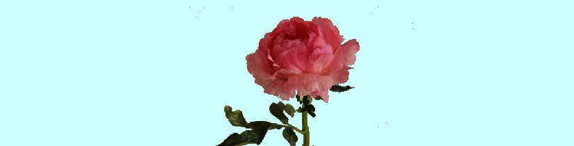 roossite