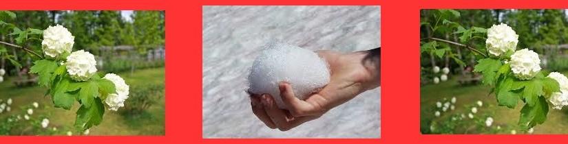 sneeuwbal3