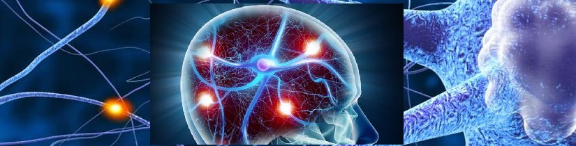Het Alzheimer-gen